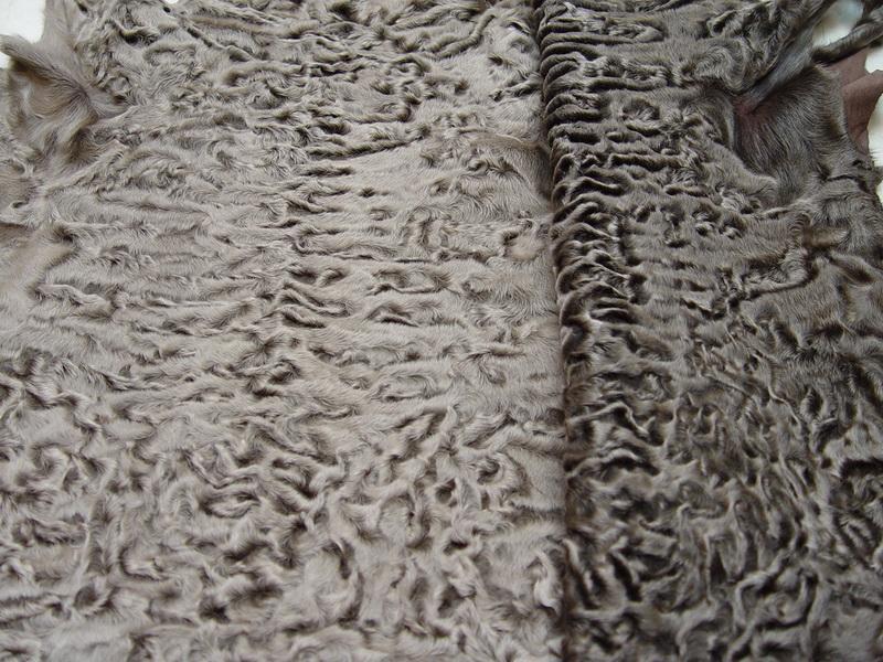 Выбор меха